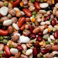 Фасоль и ее полезные свойства
